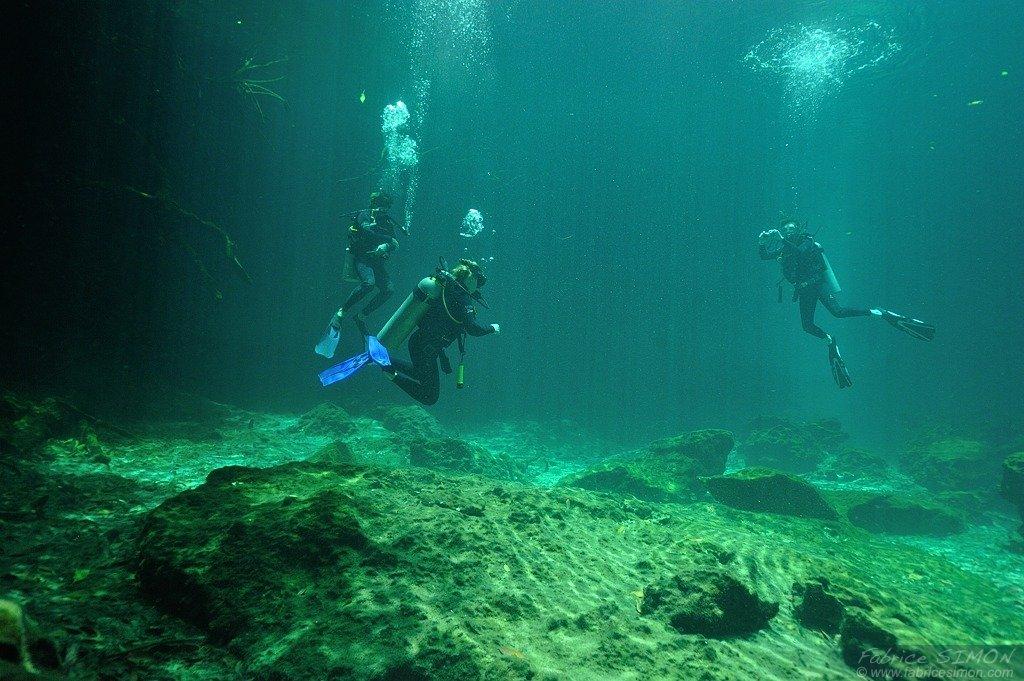 Plongée en Cenotes